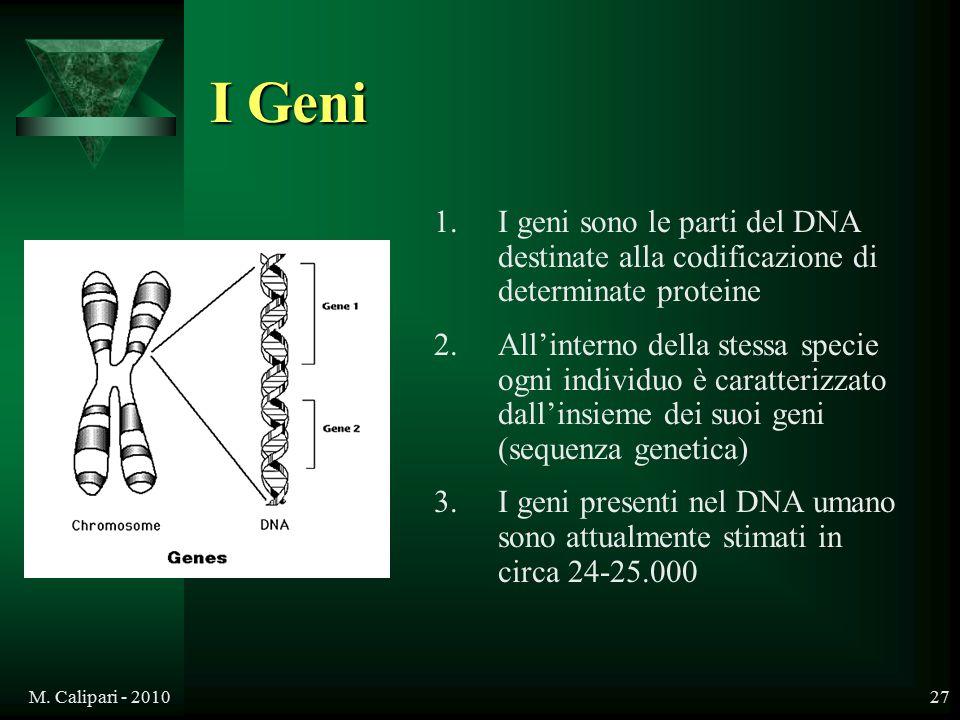 M. Calipari - 201027 I Geni 1.I geni sono le parti del DNA destinate alla codificazione di determinate proteine 2.All'interno della stessa specie ogni