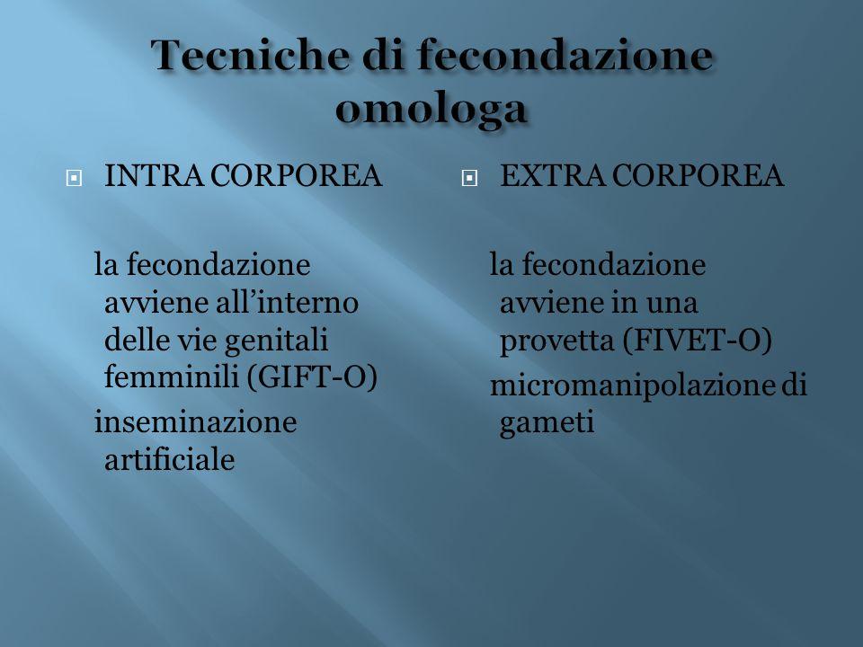  INTRA CORPOREA la fecondazione avviene all'interno delle vie genitali femminili (GIFT-O) inseminazione artificiale  EXTRA CORPOREA la fecondazione