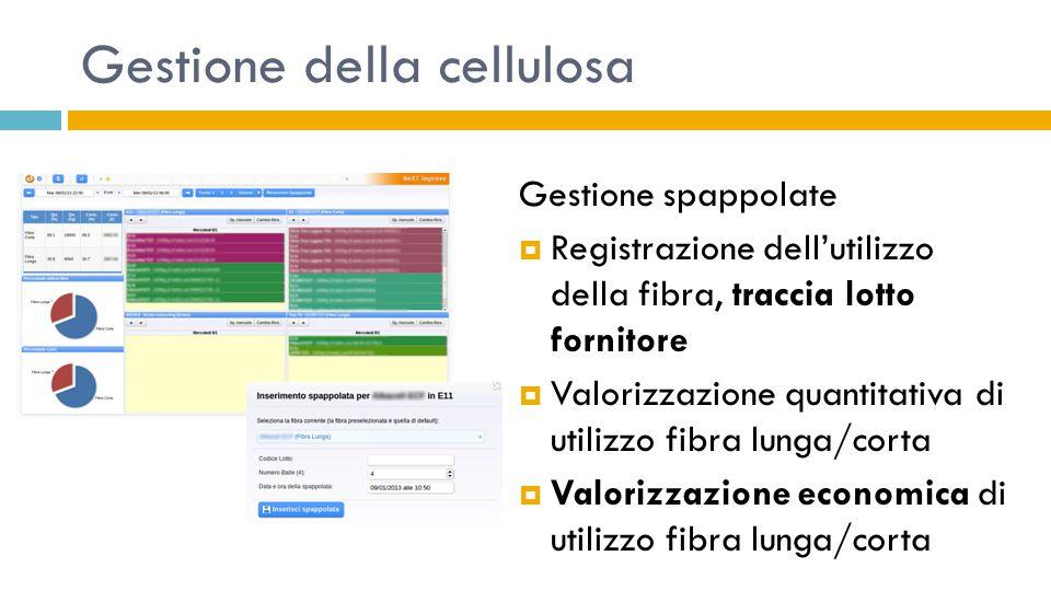 Gestione della cellulosa Gestione spappolate  Registrazione dell'utilizzo della fibra, traccia lotto fornitore  Valorizzazione quantitativa di utili