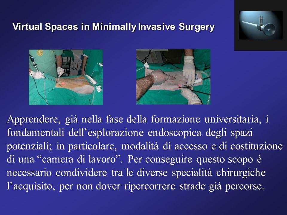 Virtual Spaces in Minimally Invasive Surgery Apprendere, già nella fase della formazione universitaria, i fondamentali dell'esplorazione endoscopica degli spazi potenziali; in particolare, modalità di accesso e di costituzione di una camera di lavoro .