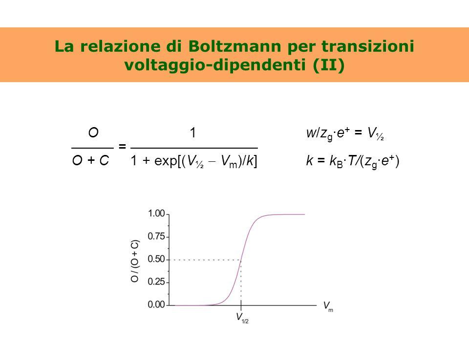 La relazione di Boltzmann per transizioni voltaggio-dipendenti (II) O 1w/z g ·e + = V ½ ——— = ————————— O + C 1 + exp[(V ½  V m )/k]k = k B ·T/(z g ·