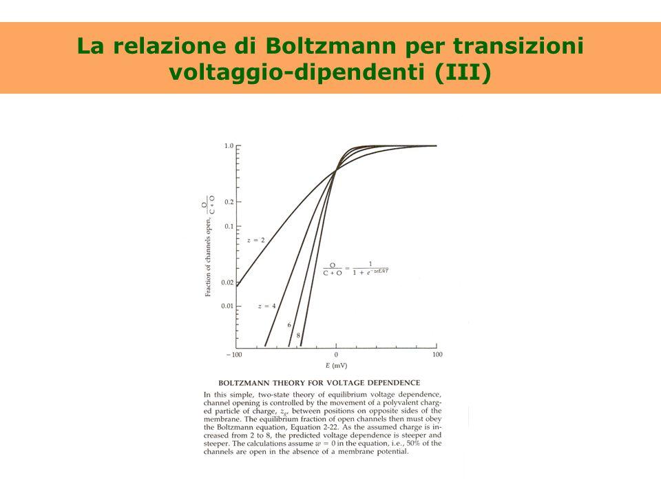 La relazione di Boltzmann per transizioni voltaggio-dipendenti (III)