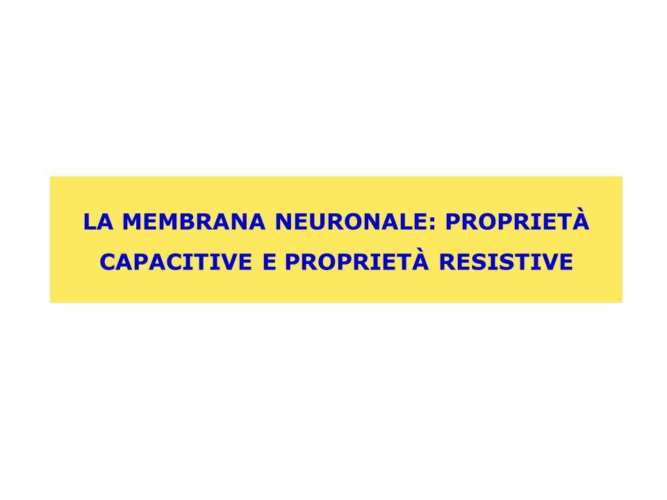 LA MEMBRANA NEURONALE: PROPRIETÀ CAPACITIVE E PROPRIETÀ RESISTIVE