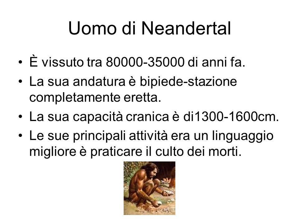 Uomo di Neandertal È vissuto tra 80000-35000 di anni fa. La sua andatura è bipiede-stazione completamente eretta. La sua capacità cranica è di1300-160