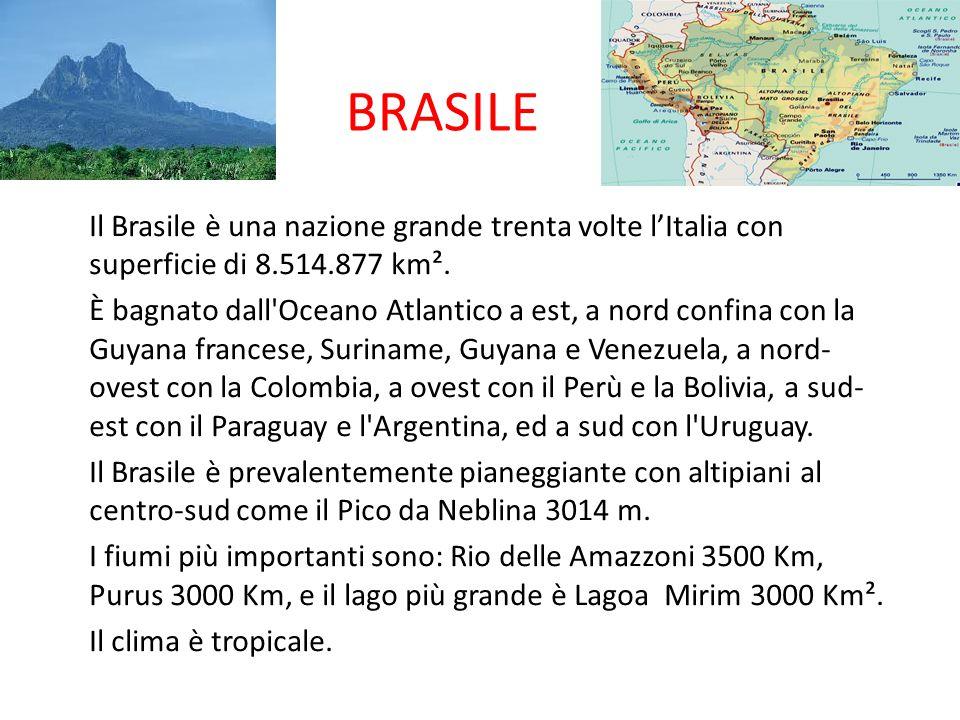 BRASILE Il Brasile è una nazione grande trenta volte l'Italia con superficie di 8.514.877 km². È bagnato dall'Oceano Atlantico a est, a nord confina c