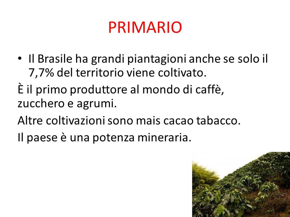 PRIMARIO Il Brasile ha grandi piantagioni anche se solo il 7,7% del territorio viene coltivato. È il primo produttore al mondo di caffè, zucchero e ag