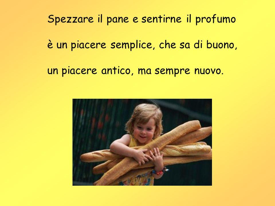 Spezzare il pane e sentirne il profumo è un piacere semplice, che sa di buono, un piacere antico, ma sempre nuovo.