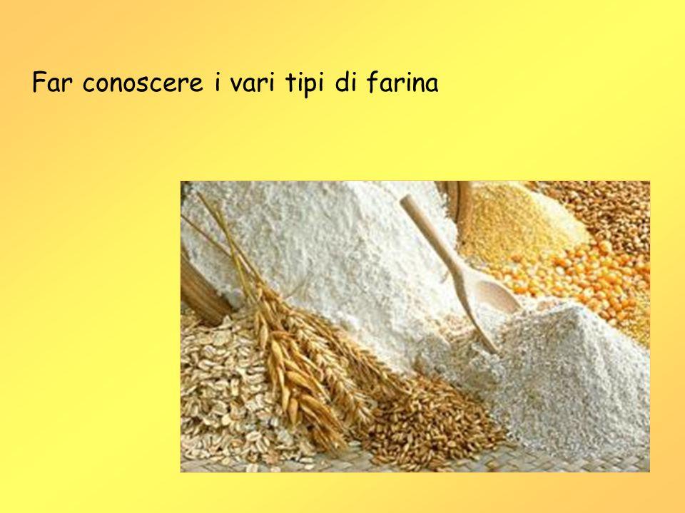 Far conoscere i vari tipi di farina