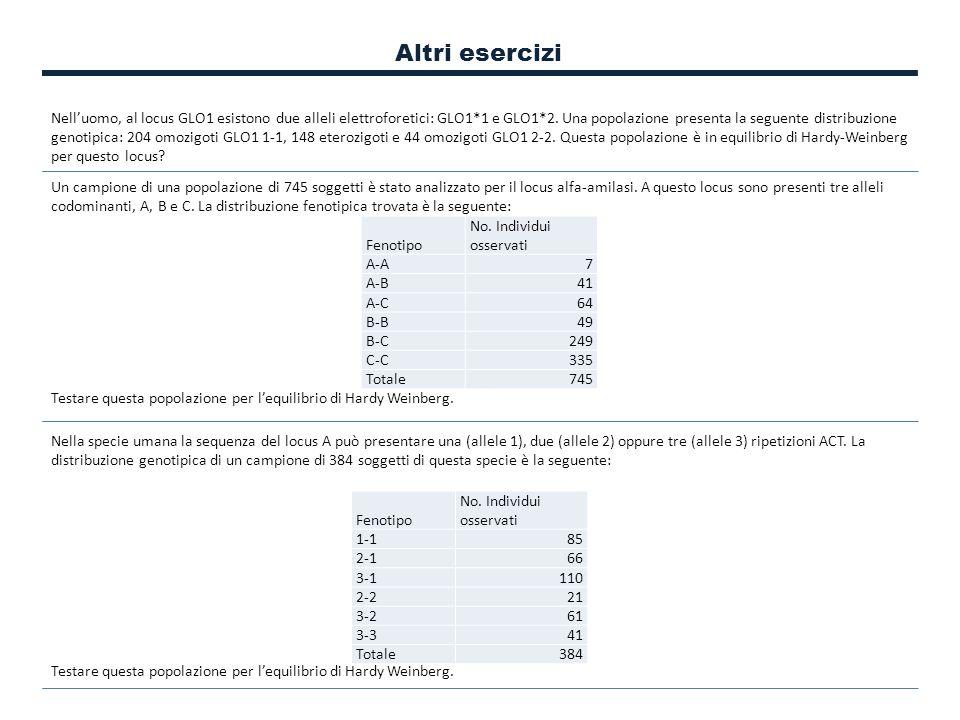 Altri esercizi Nell'uomo, al locus GLO1 esistono due alleli elettroforetici: GLO1*1 e GLO1*2. Una popolazione presenta la seguente distribuzione genot