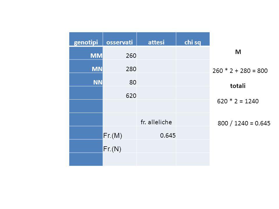 genotipiosservatiattesichi sq MM260 MN280 NN80 620 fr. alleliche Fr.(M) 0.645 Fr.(N) 620 * 2 = 1240 260 * 2 + 280 = 800 M 800 / 1240 = 0.645 totali