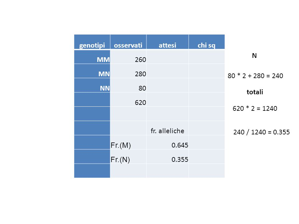 genotipiosservatiattesichi sq MM260 MN280 NN80 620 fr. alleliche Fr.(M) 0.645 Fr.(N) 0.355 620 * 2 = 1240 80 * 2 + 280 = 240 N 240 / 1240 = 0.355 tota