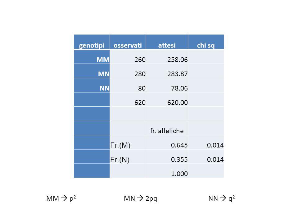 genotipiosservatiattesichi sq MM260258.06 MN280283.87 NN8078.06 620620.00 fr. alleliche Fr.(M) 0.6450.014 Fr.(N) 0.3550.014 1.000 MM  p 2 MN  2pqNN
