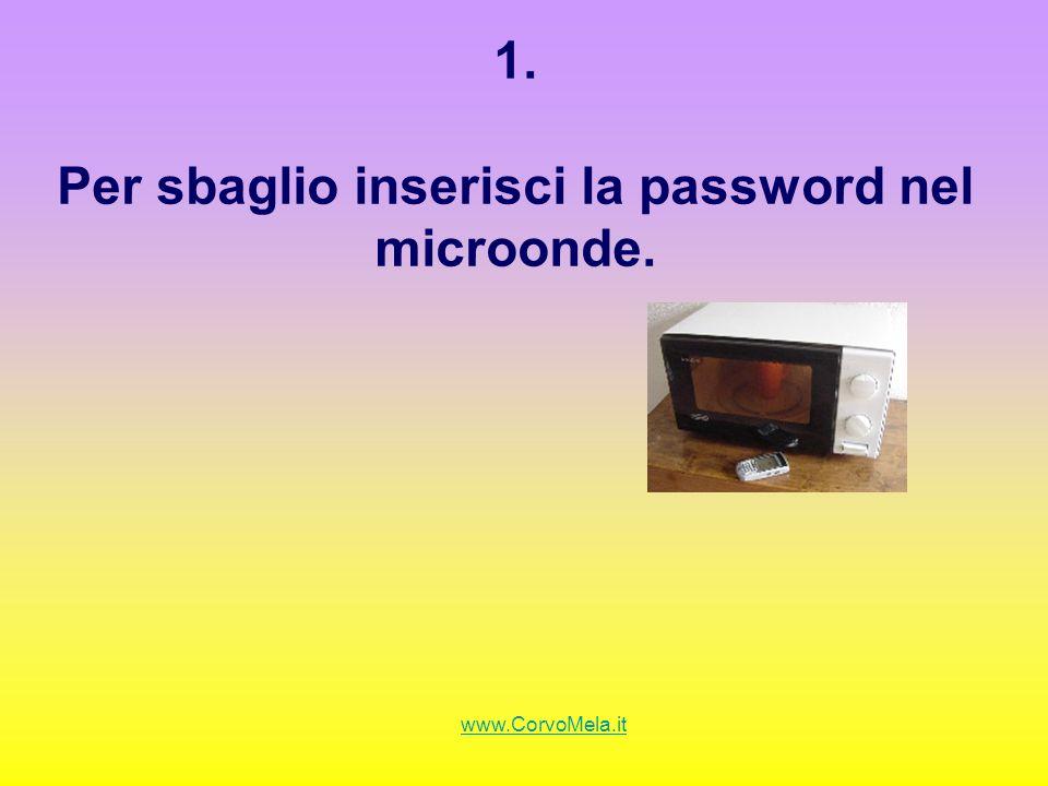 1. Per sbaglio inserisci la password nel microonde. www.CorvoMela.it