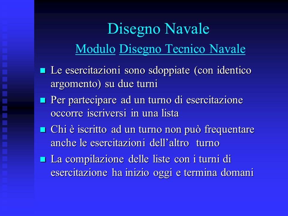 Disegno Navale Modulo Disegno Tecnico Navale Le esercitazioni sono sdoppiate (con identico argomento) su due turni Le esercitazioni sono sdoppiate (co