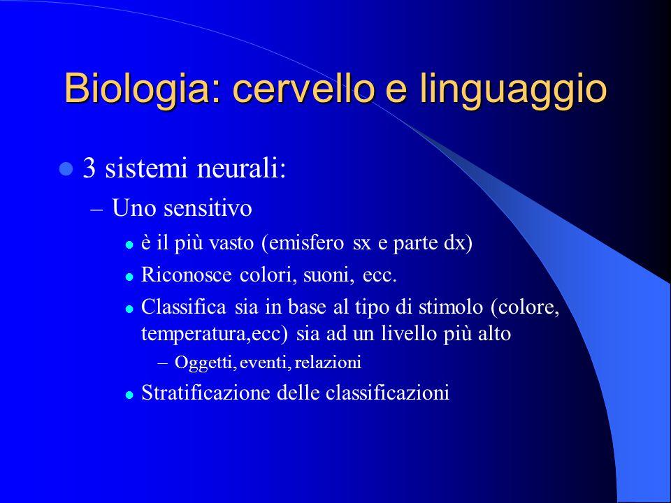 Biologia: cervello e linguaggio 3 sistemi neurali: – Uno sensitivo è il più vasto (emisfero sx e parte dx) Riconosce colori, suoni, ecc.