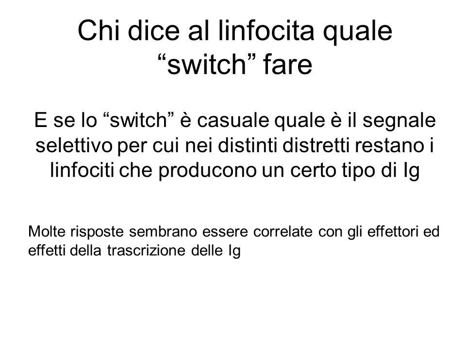 """Chi dice al linfocita quale """"switch"""" fare E se lo """"switch"""" è casuale quale è il segnale selettivo per cui nei distinti distretti restano i linfociti c"""