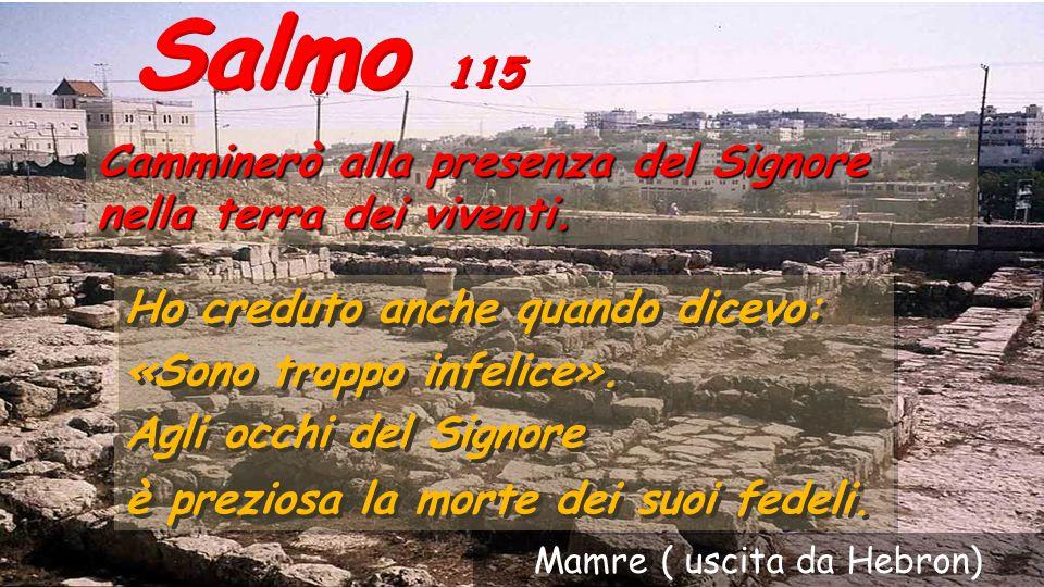 Il salmo 115 nella parte centrale del Hallel (i salmi della cena pasquale 112-117) rende grazie a Dio per aver liberato il popolo ebreo della schiavit