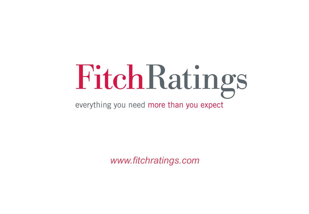 www.fitchratings.com