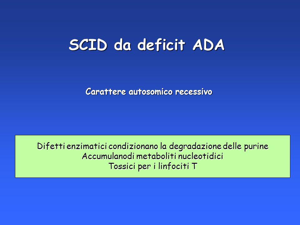 SCID da deficit ADA Carattere autosomico recessivo Difetti enzimatici condizionano la degradazione delle purine Accumulanodi metaboliti nucleotidici T