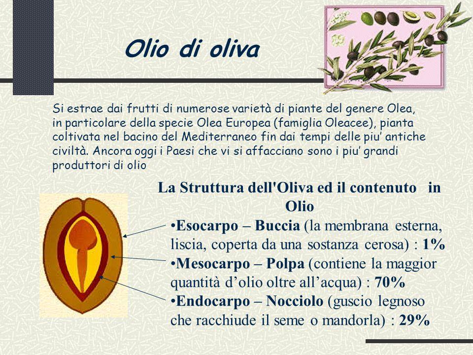 Composizione dell'oliva matura Acqua 40-50% Olio 15-36% Sostanze azotate 1,5-2% Composti non azotati 18-24% Fibra grezza 5-8% Ceneri 1-2% La composizione chimica dell'oliva è influenzata da numerosi fattori tra cui il tipo di olivo, il grado di maturazione (durante la quale si ha graduale aumento di olio e progressiva diminuzione di acqua), le condizioni climatiche