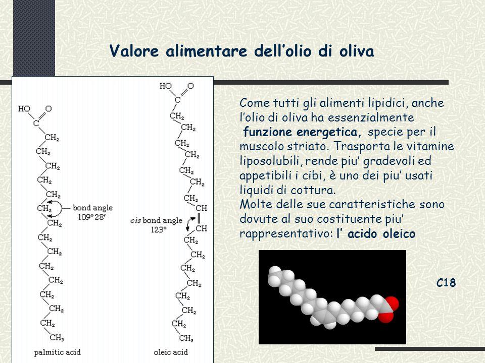 Valore alimentare dell'olio di oliva Come tutti gli alimenti lipidici, anche l'olio di oliva ha essenzialmente funzione energetica, specie per il muscolo striato.