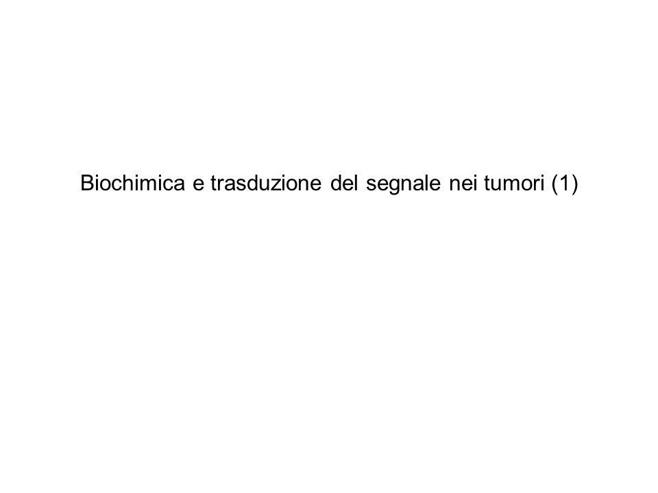 Biochimica e trasduzione del segnale nei tumori (1)