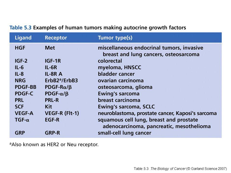 Figure 5.25 The Biology of Cancer (© Garland Science 2007) Recettori appaiati a proteine G ( > 1000) Mutazioni puntiformi del TSHR in adenomi e carcinomi della tiroide