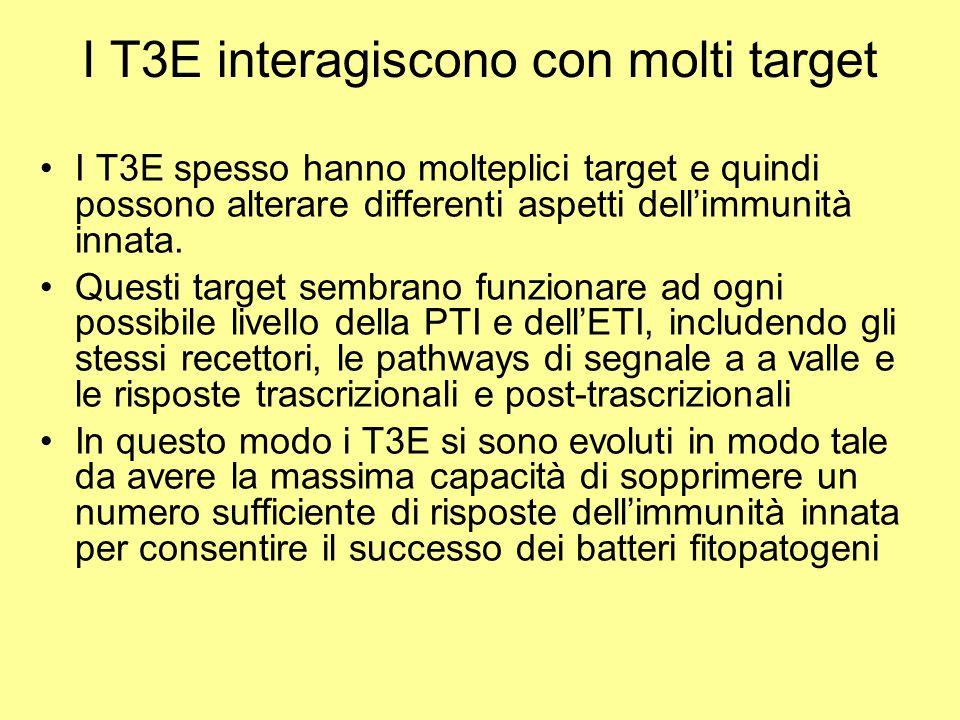 I T3E interagiscono con molti target I T3E spesso hanno molteplici target e quindi possono alterare differenti aspetti dell'immunità innata. Questi ta