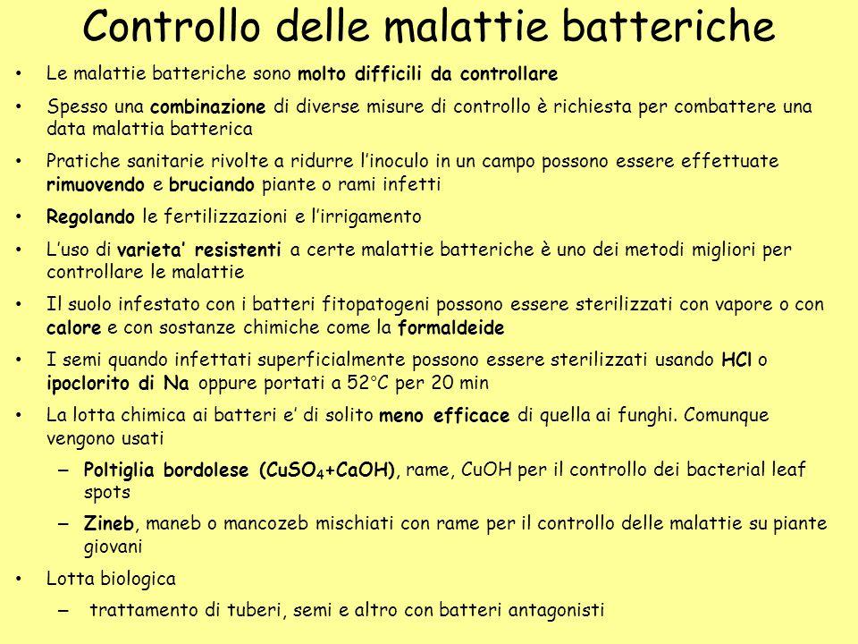Controllo delle malattie batteriche Le malattie batteriche sono molto difficili da controllare Spesso una combinazione di diverse misure di controllo