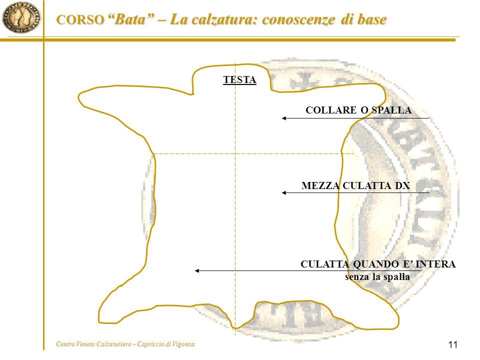 """CORSO """"Bata"""" – La calzatura: conoscenze di base Centro Veneto Calzaturiero – Capriccio di Vigonza 11 TESTA COLLARE O SPALLA MEZZA CULATTA DX CULATTA Q"""