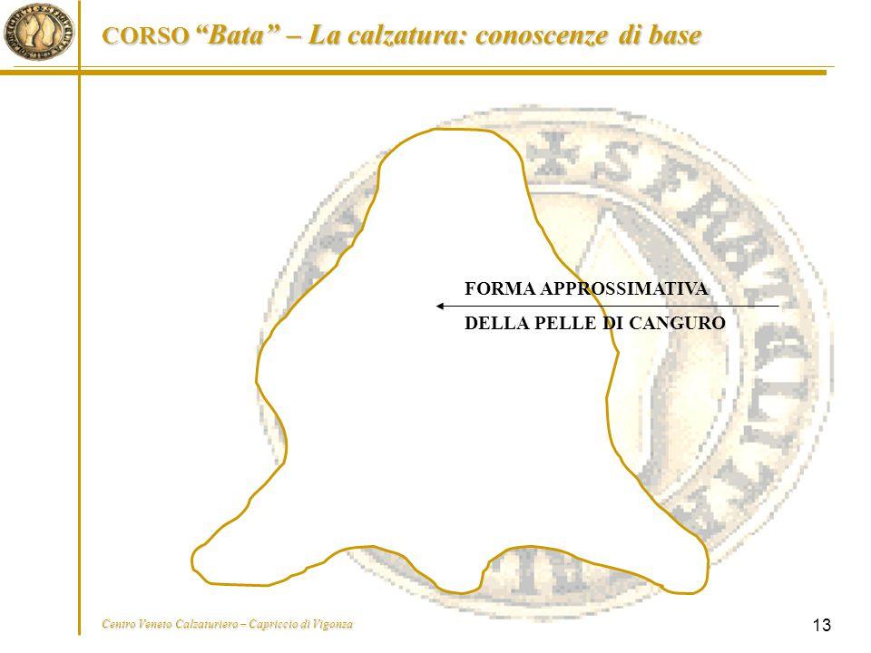 """CORSO """"Bata"""" – La calzatura: conoscenze di base Centro Veneto Calzaturiero – Capriccio di Vigonza 13 FORMA APPROSSIMATIVA DELLA PELLE DI CANGURO"""