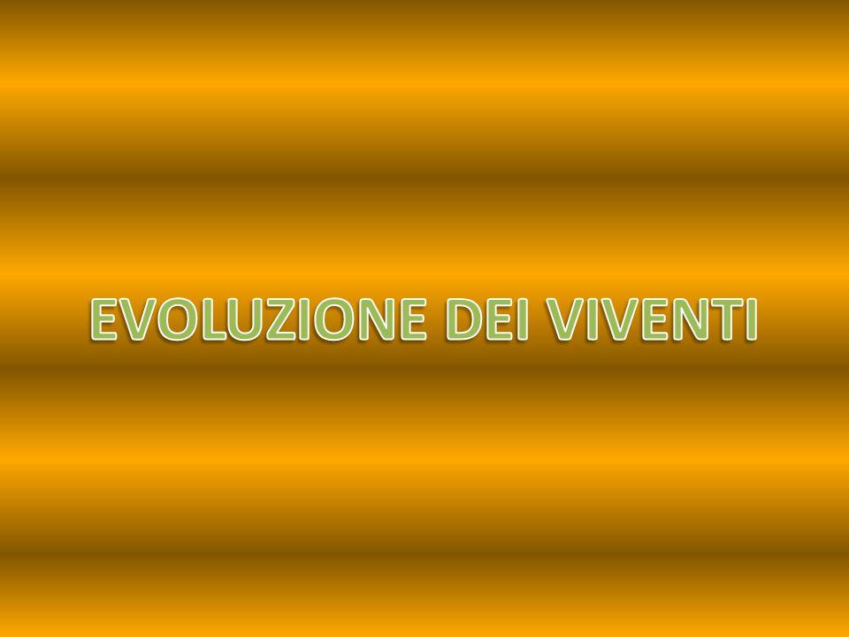 Evoluzione Darwin Cuvier Lamarck