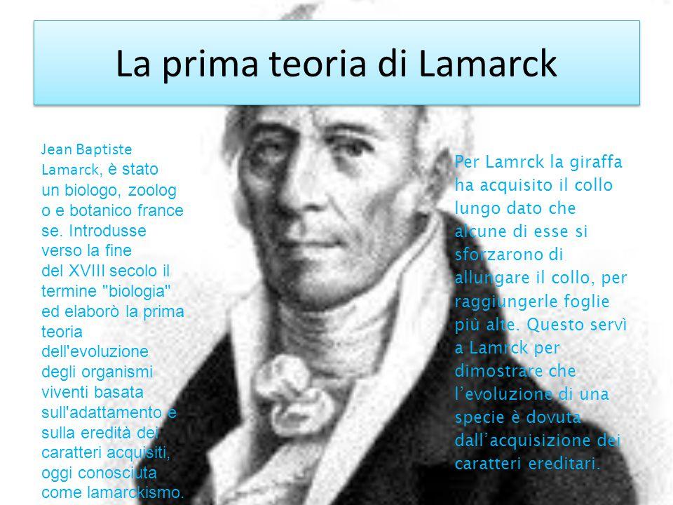 La prima teoria di Lamarck Jean Baptiste Lamarck, è stato un biologo, zoolog o e botanico france se. Introdusse verso la fine del XVIII secolo il term