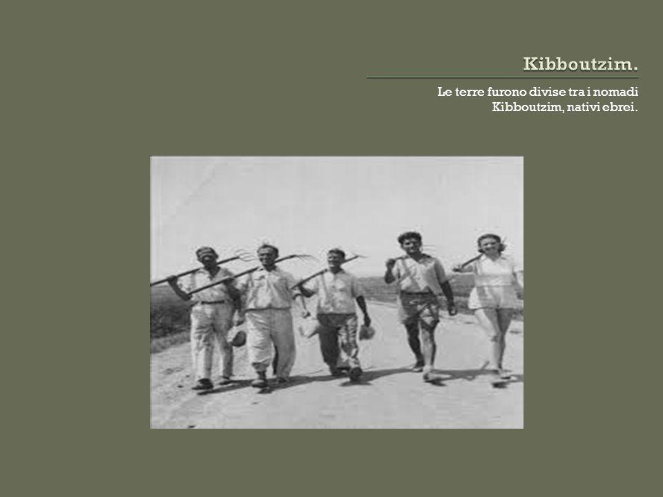 Le terre furono divise tra i nomadi Kibboutzim, nativi ebrei.