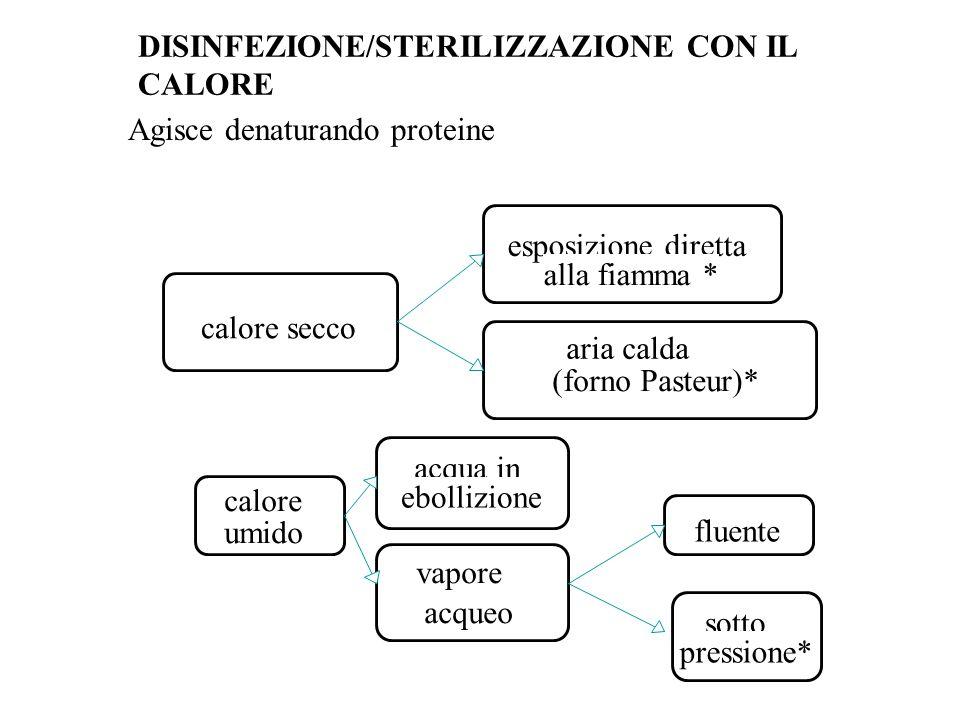 Forno Pasteur o Stufa a secco DISINFEZIONE/STERILIZZAZIONE CON IL CALORE