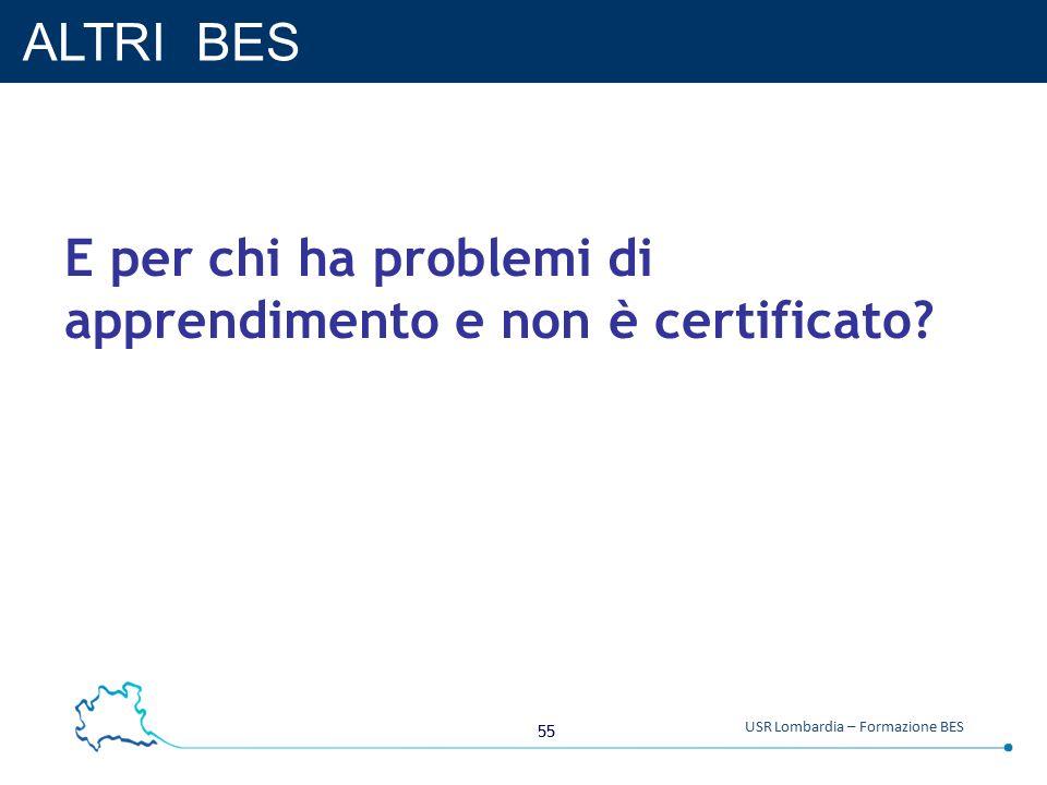 55 USR Lombardia – Formazione BES ALTRI BES E per chi ha problemi di apprendimento e non è certificato?
