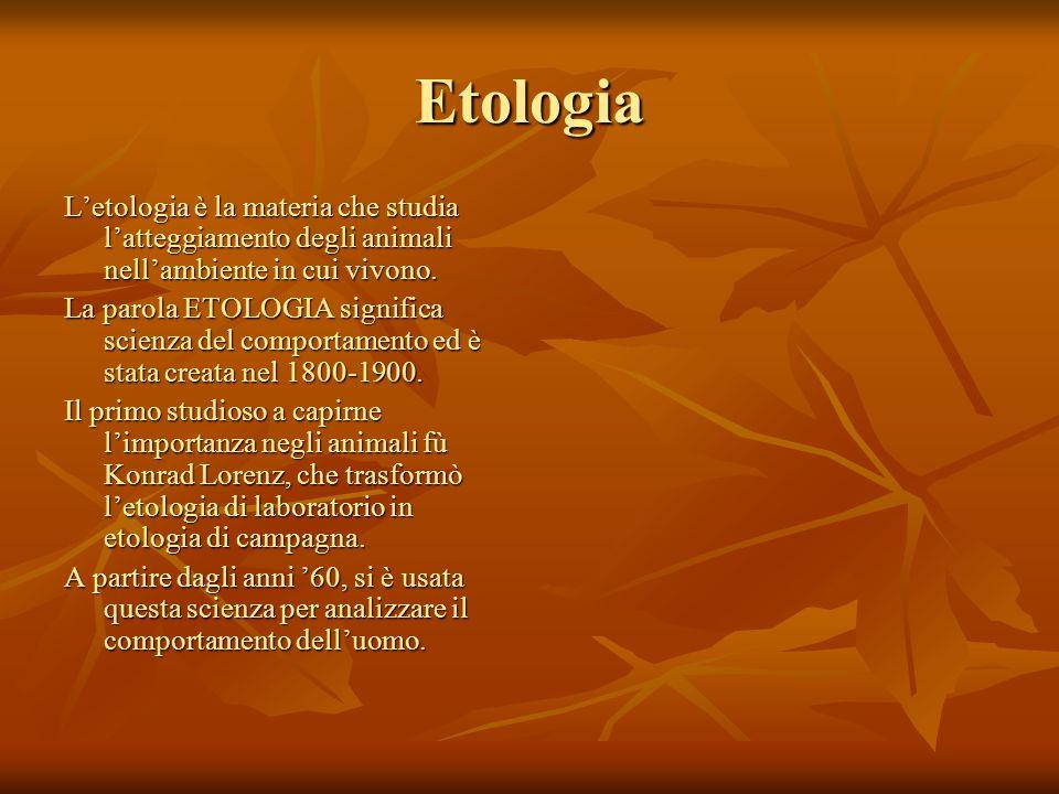 Etologia L'etologia è la materia che studia l'atteggiamento degli animali nell'ambiente in cui vivono.