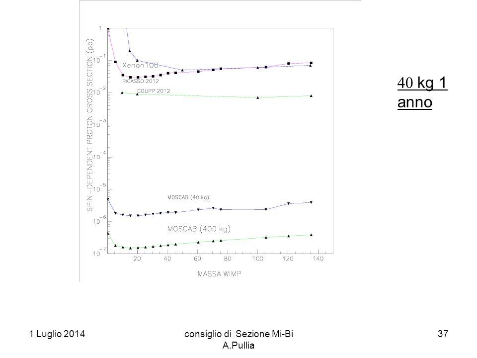 1 Luglio 2014consiglio di Sezione Mi-Bi A.Pullia 37  kg 1 anno