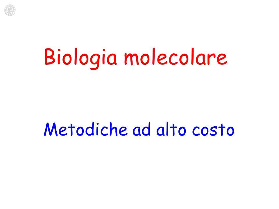 Metodiche ad alto costo Biologia molecolare