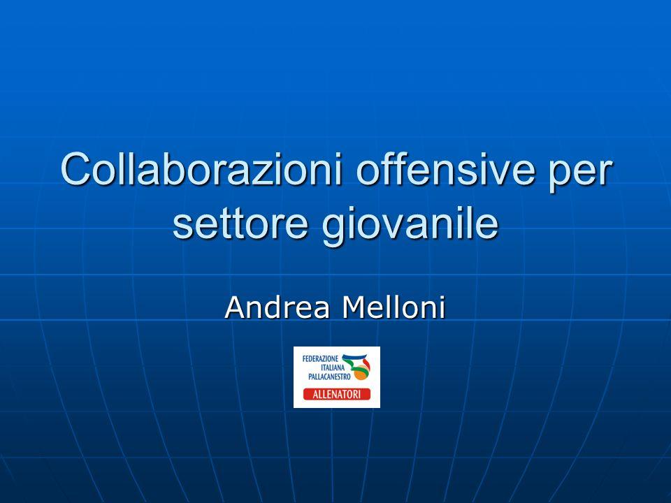 Collaborazioni offensive per settore giovanile Andrea Melloni