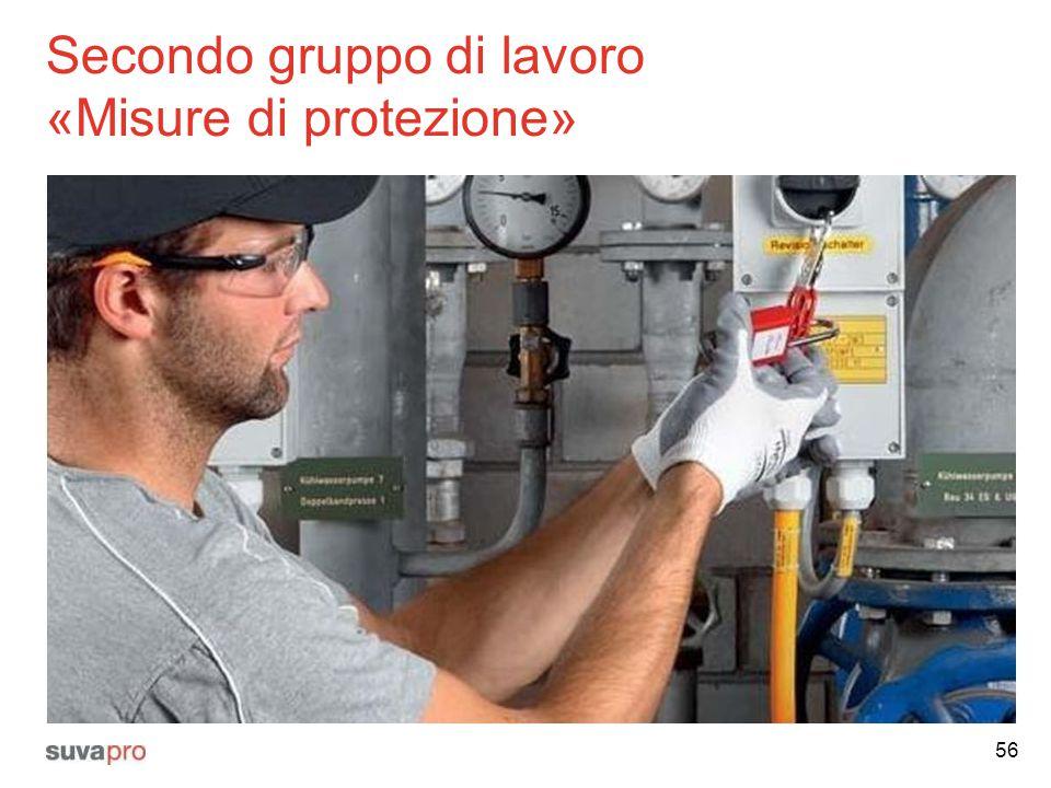 Secondo gruppo di lavoro «Misure di protezione» 56
