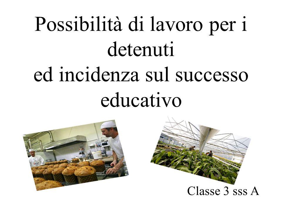 Possibilità di lavoro per i detenuti ed incidenza sul successo educativo Classe 3 sss A