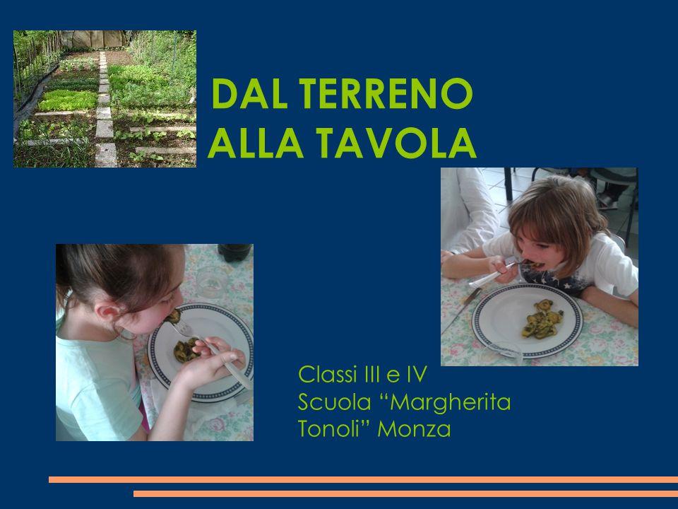 """DAL TERRENO ALLA TAVOLA Classi III e IV Scuola """"Margherita Tonoli"""" Monza"""