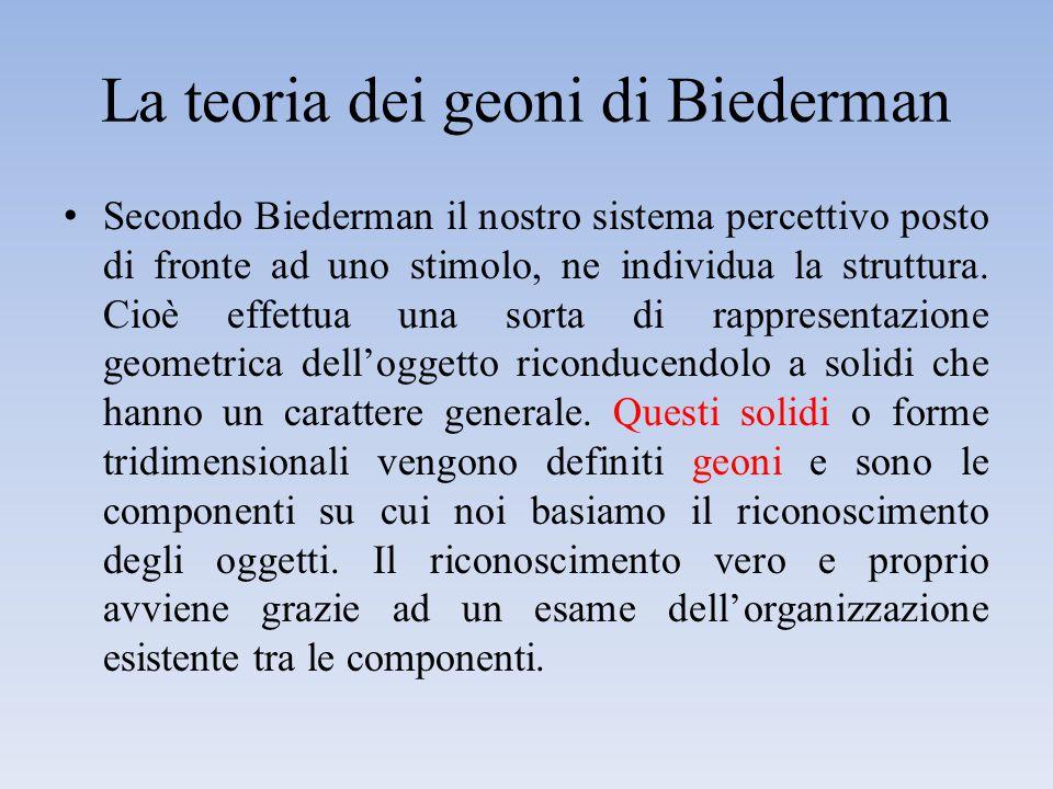 La teoria dei geoni di Biederman I geoni vengono estratti sulla base dell'analisi dell'immagine retinica: – Bordi (con particolare riferimento alle parti concave), simmetria, dimensione della sezione trasversale di un cono generalizzato.