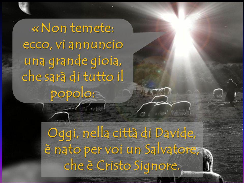 Oggi, nella città di Davide, è nato per voi un Salvatore, che è Cristo Signore. «Non temete: ecco, vi annuncio una grande gioia, che sarà di tutto il