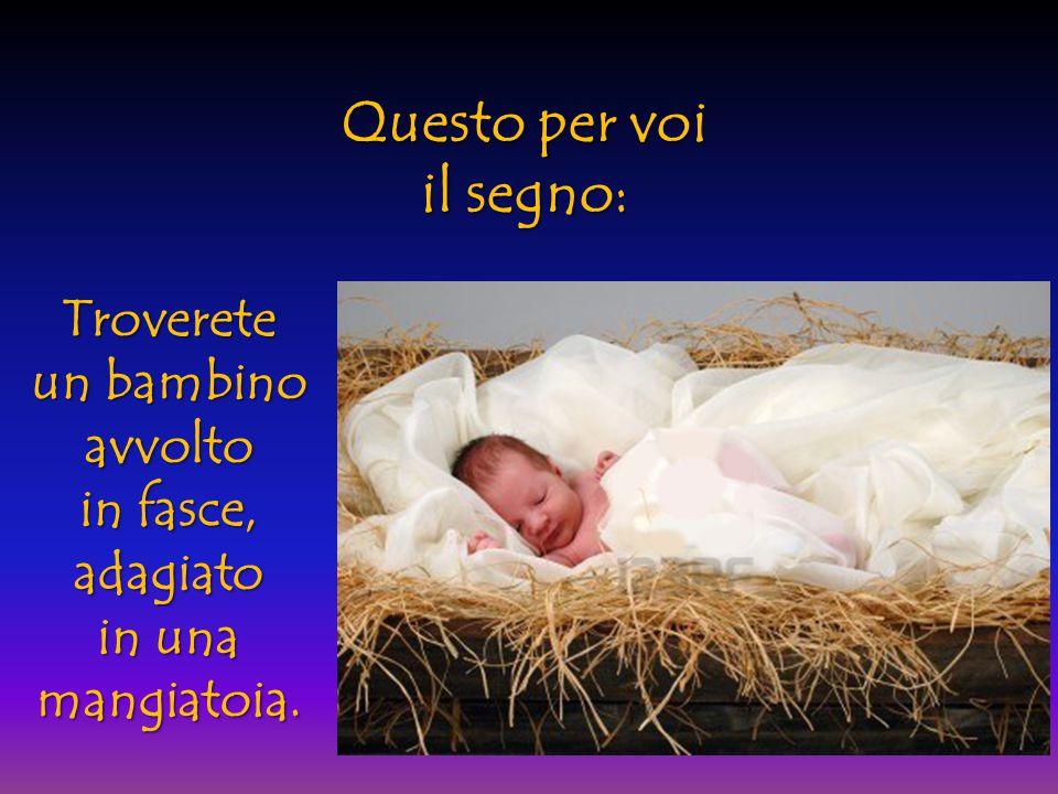E subito apparve con l'Angelo una moltitudine dell'Esercito Celeste, che lodava Dio e diceva: Gloria aDio nel più alto dei Cieli e sulla Terra pace agli uomini, che Egli ama!