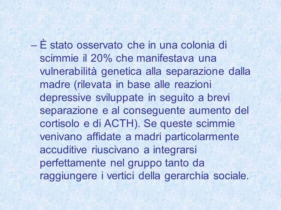 –È stato osservato che in una colonia di scimmie il 20% che manifestava una vulnerabilità genetica alla separazione dalla madre (rilevata in base alle