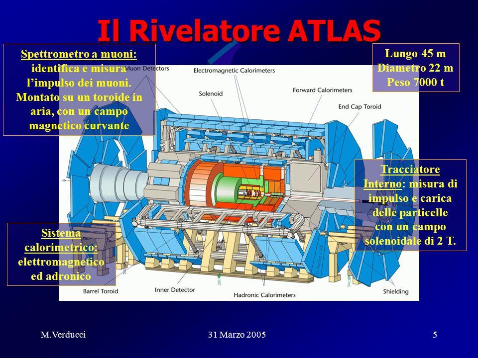 M.Verducci31 Marzo 20055 Il Rivelatore ATLAS Spettrometro a muoni: identifica e misura l'impulso dei muoni.