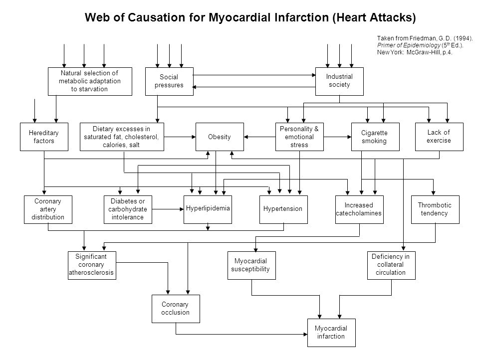 Natural selection of metabolic adaptation to starvation Social pressures Industrial society Hereditary factors Dietary excesses in saturated fat, cholesterol, calories, salt Obesity Personality & emotional stress Cigarette smoking Lack of exercise Coronary artery distribution Diabetes or carbohydrate intolerance Hyperlipidemia Hypertension Increased catecholamines Thrombotic tendency Significant coronary atherosclerosis Myocardial susceptibility Deficiency in collateral circulation Coronary occlusion Myocardial infarction Web of Causation for Myocardial Infarction (Heart Attacks) Taken from Friedman, G.