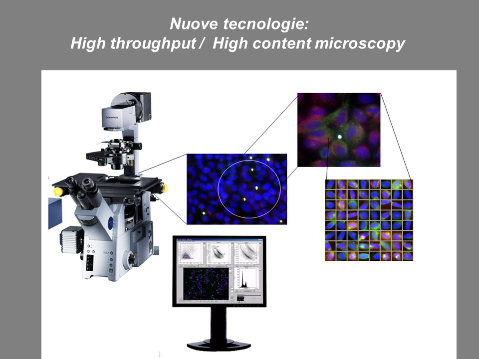Nuove tecnologie: High throughput / High content microscopy Microscopia ottica: